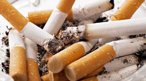 tabac tracabilite